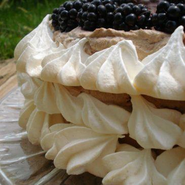 Puslica torta sa čokoladnim kremom