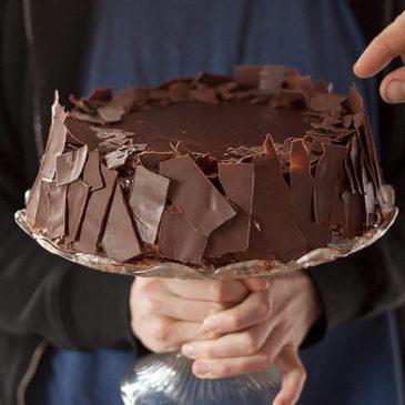 Čokoladna torta sa ribizlama