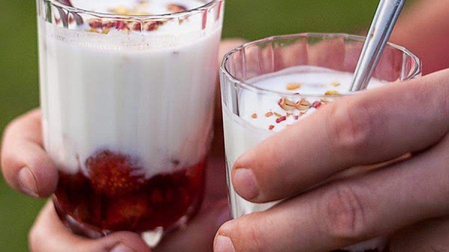 jogurtrabarbara