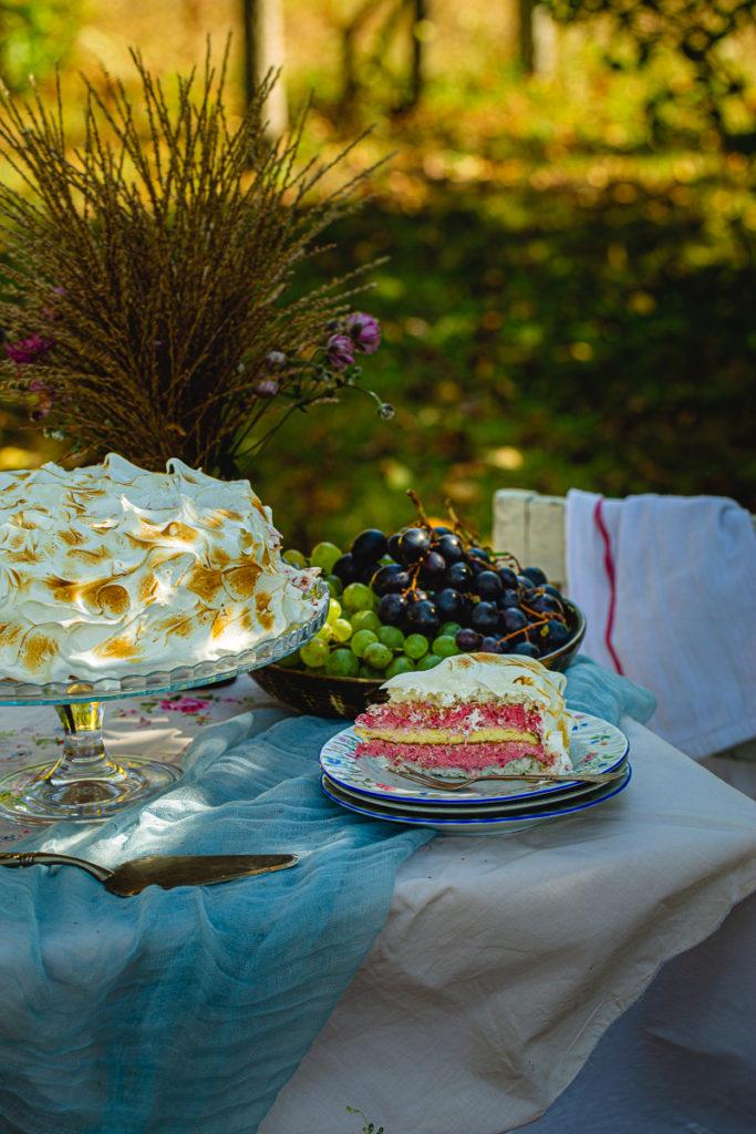 Torta sa malinama i kokosom