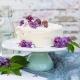 jednostavna torta sa rikotom