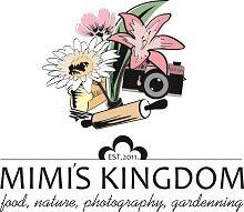 cropped-finalni-fajl-jpg220.jpg